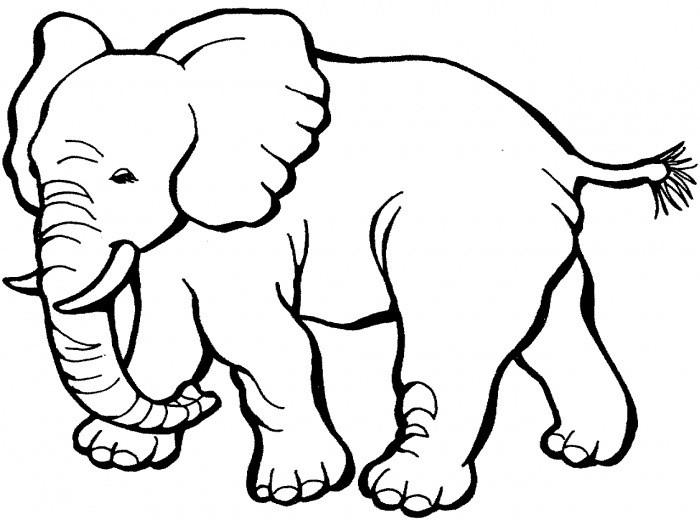 Best ideas about Free Coloring Pages African Animals . Save or Pin African Animal Template Animal Templates Now.