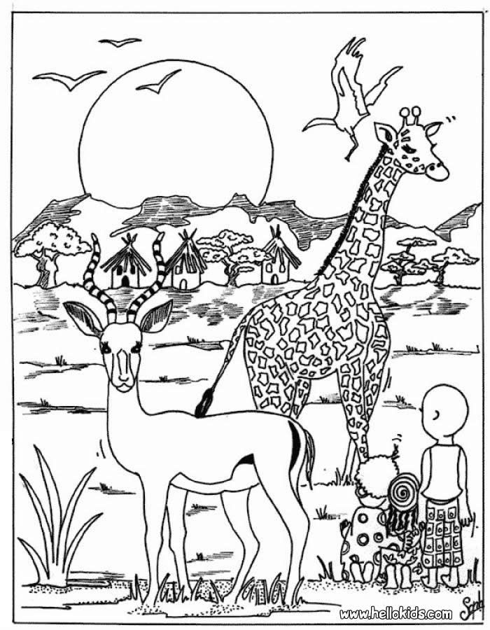 Best ideas about Free Coloring Pages African Animals . Save or Pin Giraffe and antelope coloring page Now.