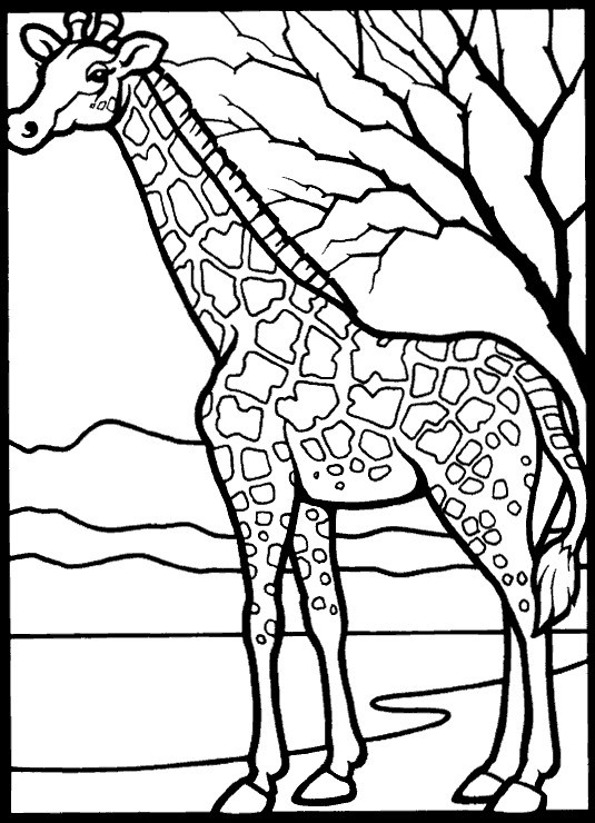 Best ideas about Free Coloring Pages African Animals . Save or Pin Kids n fun Now.