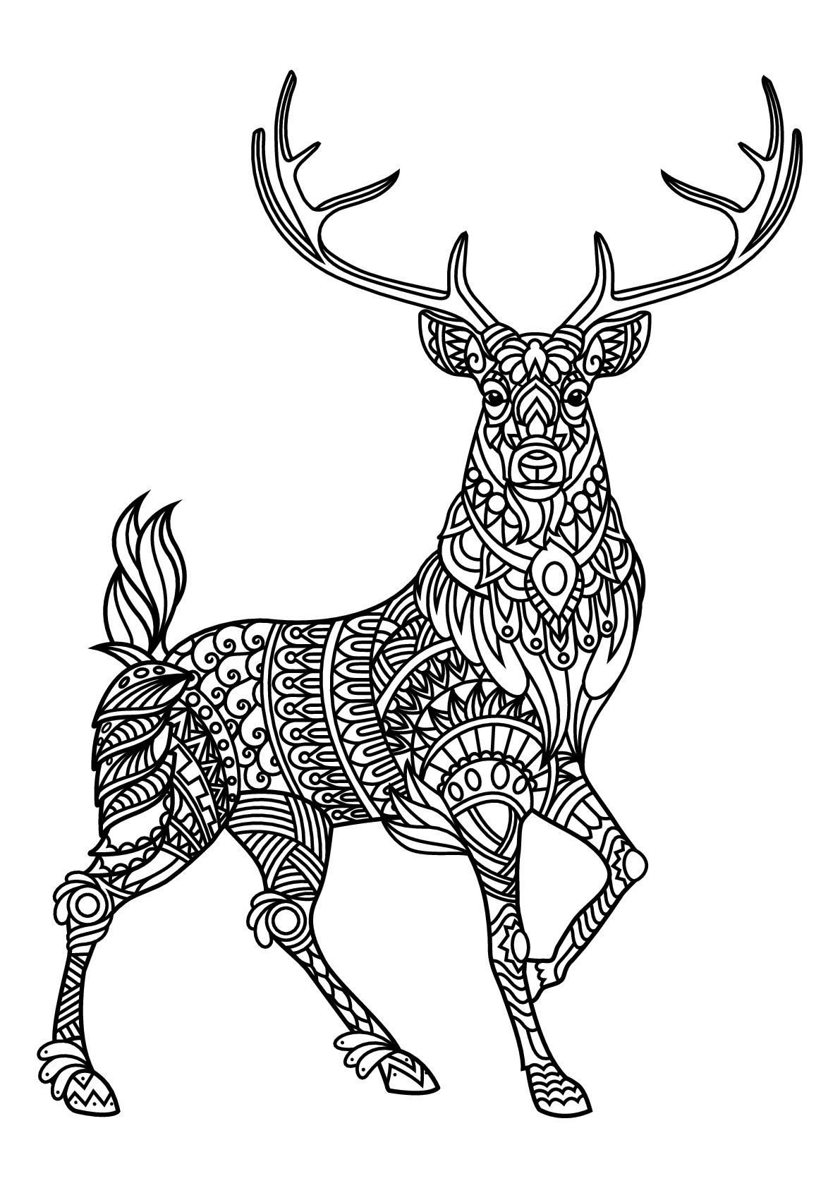 Best ideas about Free Coloring Pages Deer . Save or Pin Free book deer Deers Adult Coloring Pages Now.