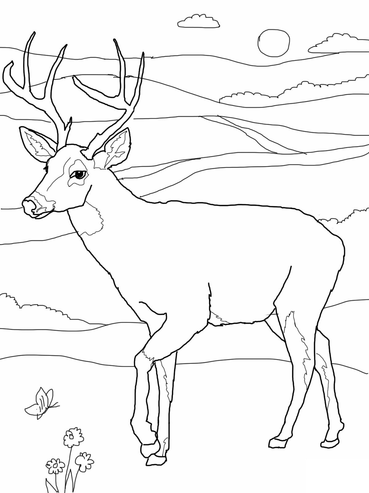 Best ideas about Free Coloring Pages Deer . Save or Pin Free Printable Deer Coloring Pages For Kids Now.