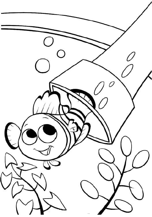 Best ideas about Free Coloring Pages Of Finding Nemo . Save or Pin Printable Nemo The Fish Coloring Pages Finding Nemo Now.