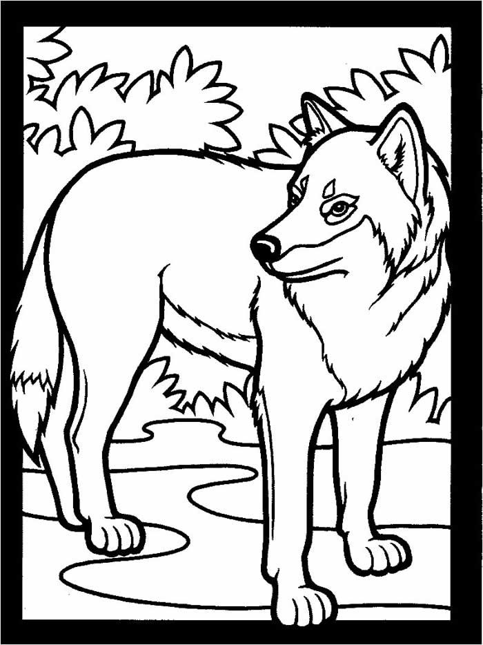 Best ideas about Free Coloring Pages Of Wolves . Save or Pin Wolf Coloring Pages Now.