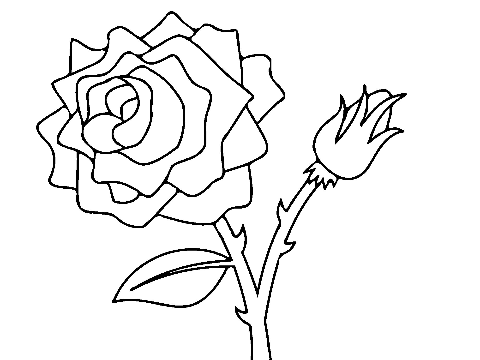 Best ideas about Free Coloring Pages Roses . Save or Pin Free Printable Roses Coloring Pages For Kids Now.