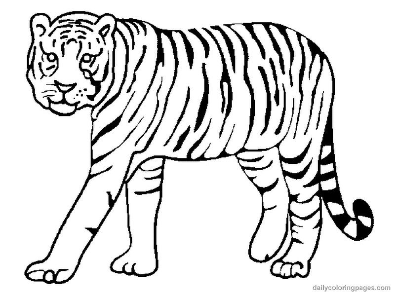 Best ideas about Free Coloring Pages Wild Animals . Save or Pin Free Wild Animal Coloring Pages Coloring Home Now.