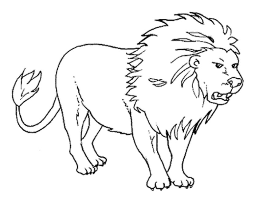Best ideas about Free Coloring Pages Wild Animals . Save or Pin Wild Animals Coloring Pages Coloring Home Now.