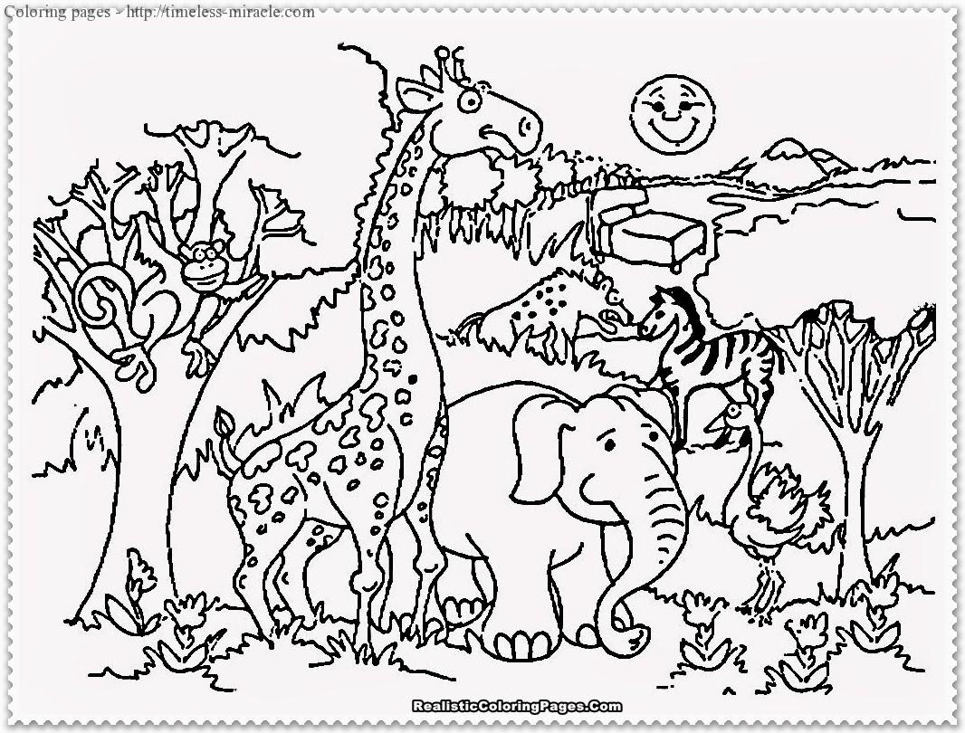 Best ideas about Free Printable Coloring Sheets For Boys Animal . Save or Pin Zoo animals coloring page timeless miracle Now.