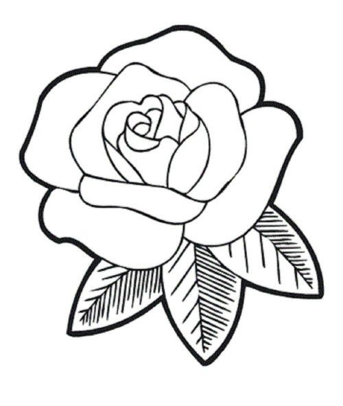Best ideas about Free Printable Of Roses Coloring Pages For Girls Pinterest. . Save or Pin Rose Coloring Pages Now.