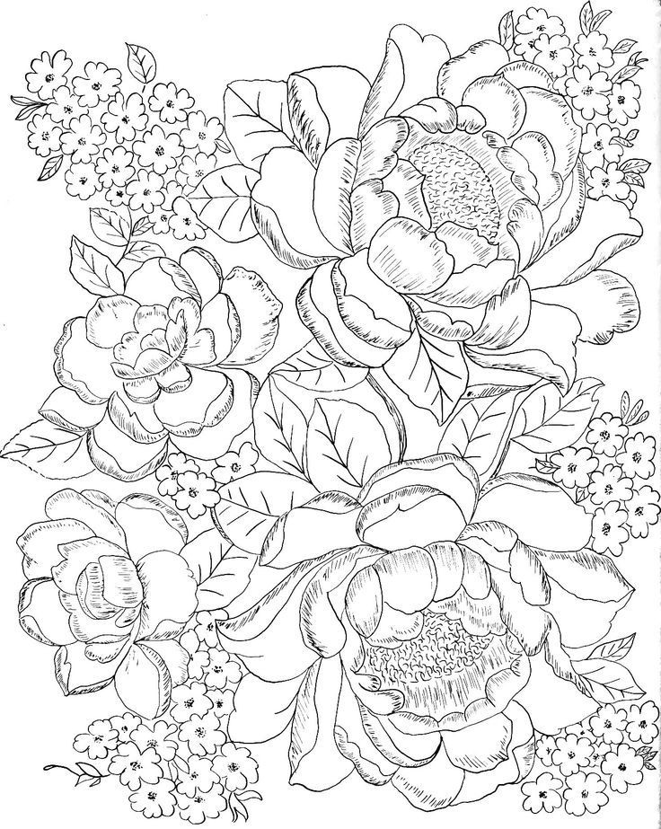 Best ideas about Free Printable Of Roses Coloring Pages For Girls Pinterest. . Save or Pin desenhos de outono para colorir Pesquisa Google Now.