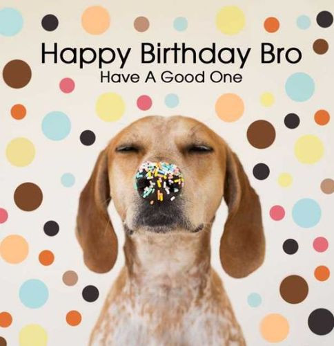 Best ideas about Funny Happy Birthday Wishes For Brother . Save or Pin Birthday Wishes for Brother Happy Birthday Brother Quotes Now.