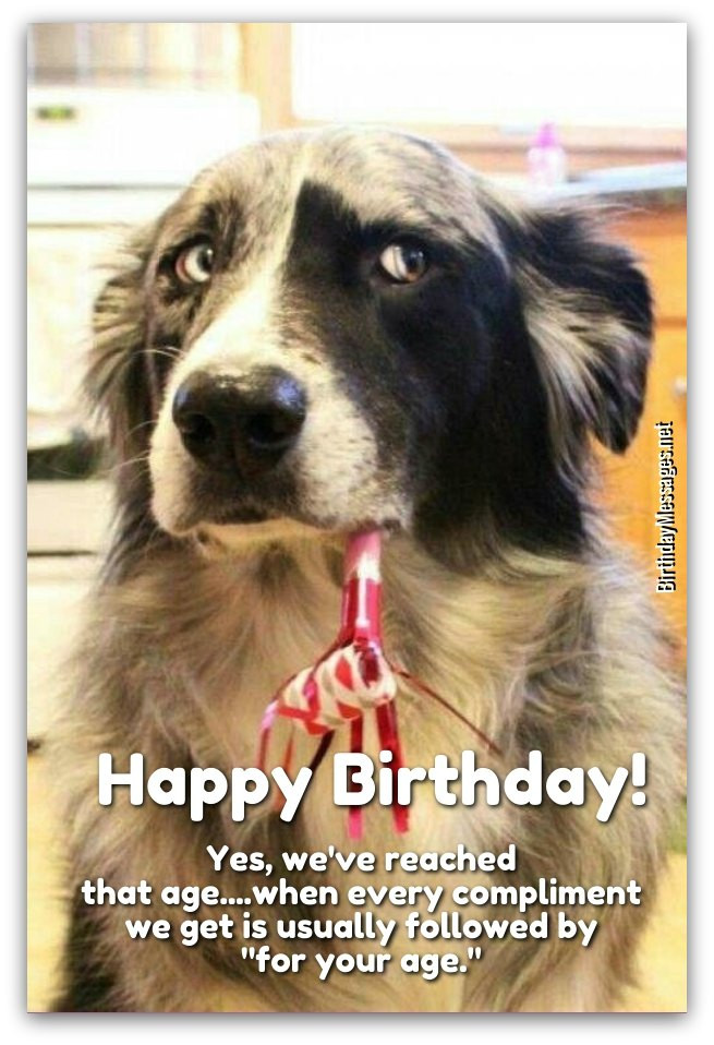 Best ideas about Funny Happy Birthday Wishes . Save or Pin Funny Birthday Wishes 250 Uniquely Funny Messages Now.