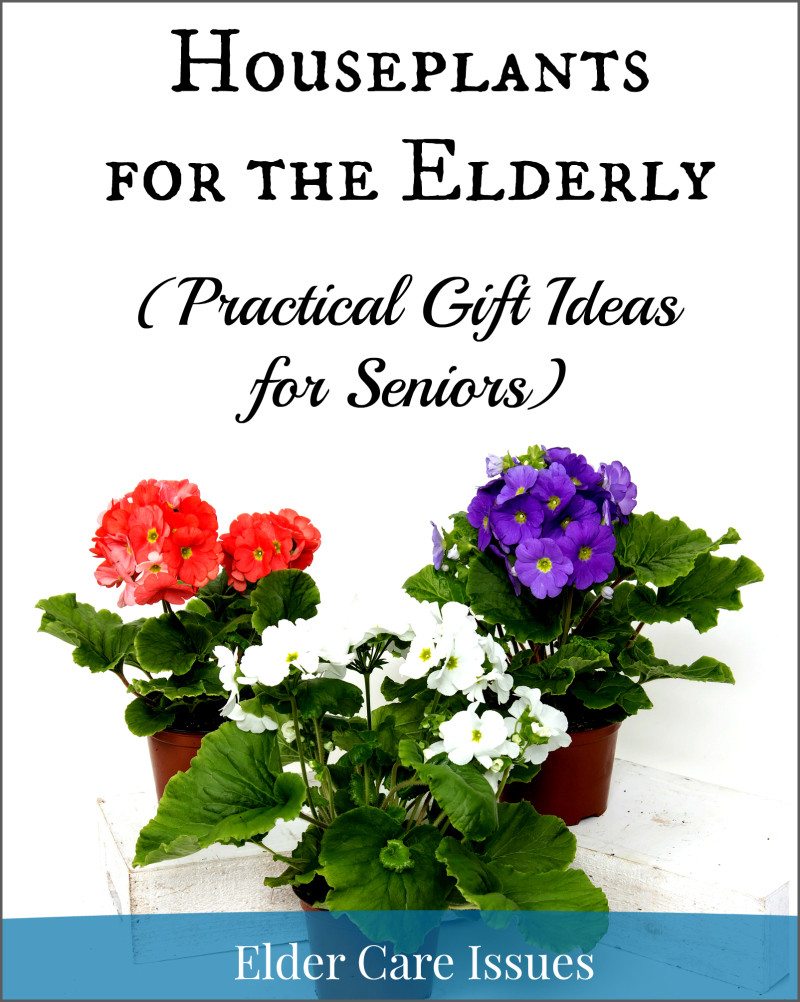 Best ideas about Gift Ideas For Elderly . Save or Pin Houseplants for the Elderly Practical Gift Ideas for Now.