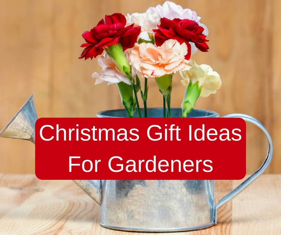 Best ideas about Gift Ideas For Gardeners . Save or Pin 30 Creative Christmas Gift Ideas For Gardeners Now.