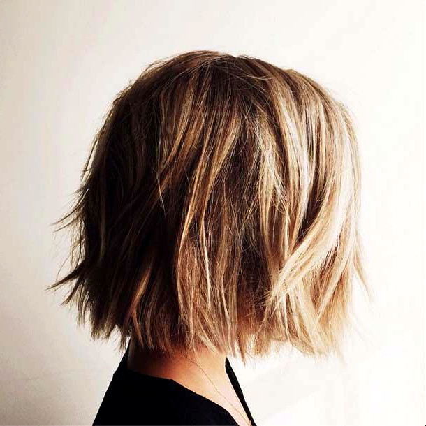 Best ideas about Girls Hairstyles For Short Hair . Save or Pin 30 Amazing Short Hairstyles for 2019 Amazing Short Now.