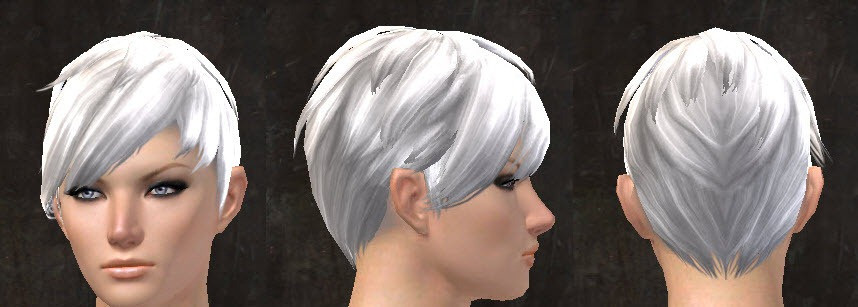 Best ideas about Gw2 Hairstyles . Save or Pin GW2 New Hairstyles from Total Makeover Kits for April 14 Now.