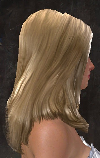 Best ideas about Gw2 Hairstyles . Save or Pin GW2 New hairstyles in makeover kits Dulfy Now.