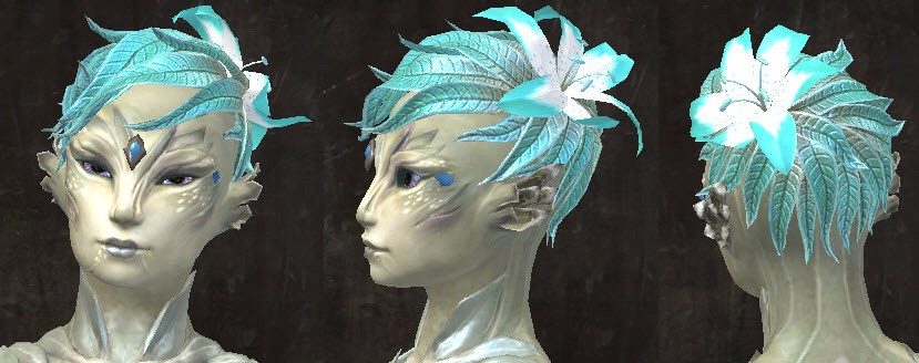 Best ideas about Gw2 Hairstyles . Save or Pin GW2 New Hairstyles in Wintersday Patch Dulfy Now.