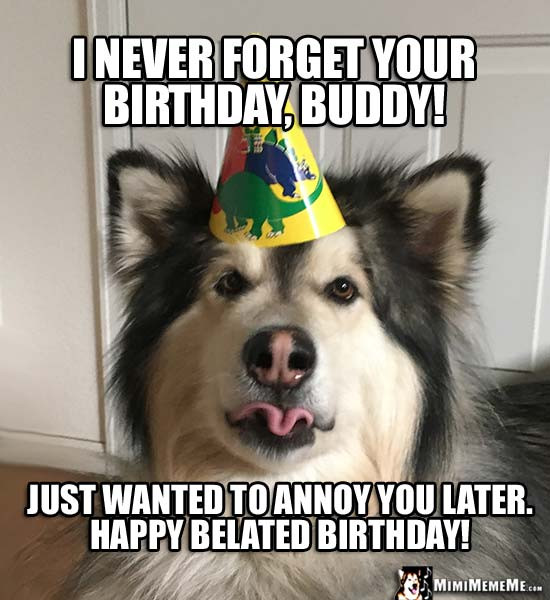 Best ideas about Happy Belated Birthday Funny . Save or Pin 20 Funny Belated Birthday Memes For People Who Always Now.