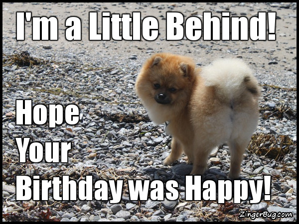 Best ideas about Happy Belated Birthday Funny . Save or Pin Belated Birthday Glitter Graphics ments GIFs Memes Now.