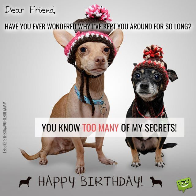 Best ideas about Happy Birthday Friend Funny . Save or Pin Funny Birthday Wishes for your Family & Friends Now.