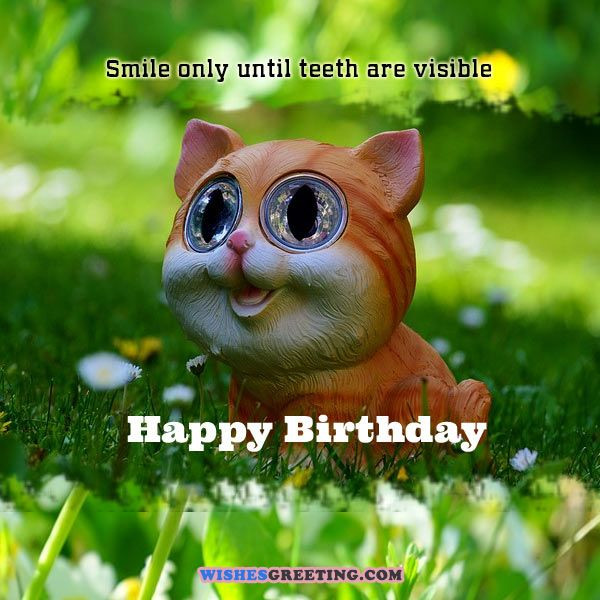 Best ideas about Happy Birthday Funny Wishes . Save or Pin 105 Funny Birthday Wishes and Messages Now.