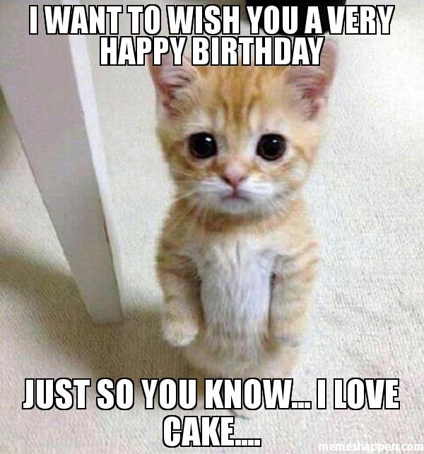Best ideas about Happy Birthday Funny Woman . Save or Pin 50 Happy Birthday Funny For Women – Yellow Octopus Now.