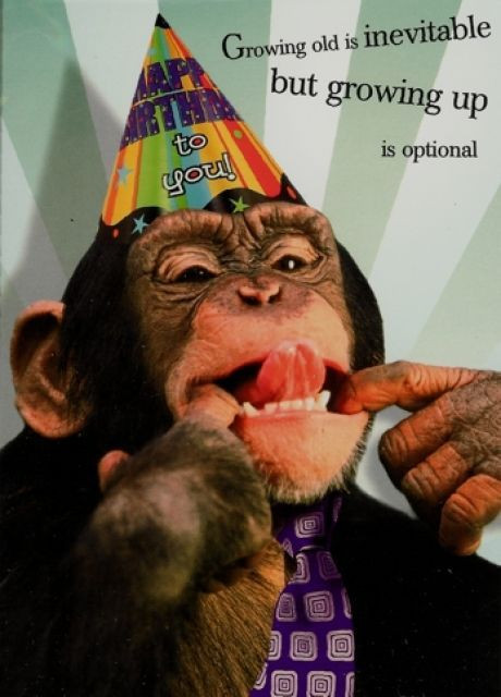 Best ideas about Happy Birthday Sexy Funny . Save or Pin Happy Birthday to the Monkey in my life PARIS Let s Now.