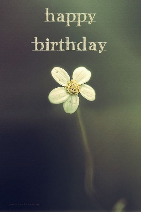Best ideas about Happy Birthday Wishes For Her . Save or Pin 52 Sweet or Funny Happy Birthday My Happy Now.