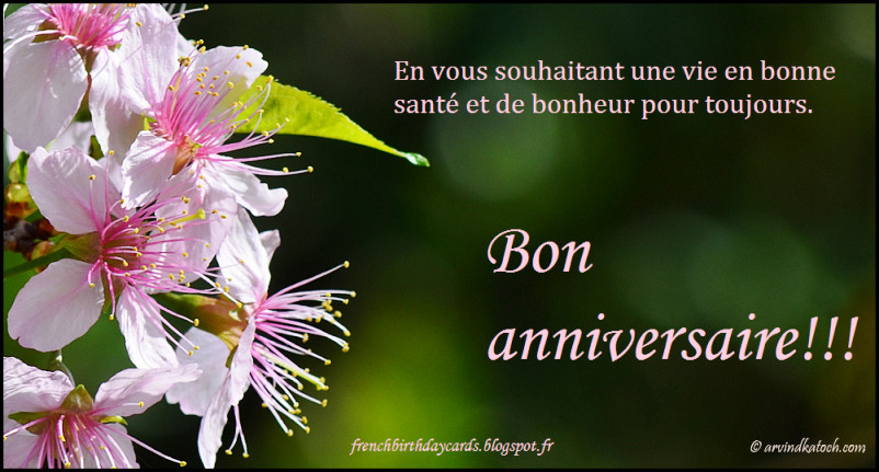 Best ideas about Happy Birthday Wishes In French . Save or Pin Birthday Wishes In French Page 2 Now.