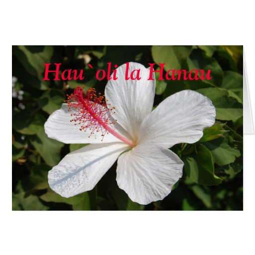 Best ideas about Hawaiian Birthday Wishes . Save or Pin Hawaiian Happy Birthday Greeting Card Now.