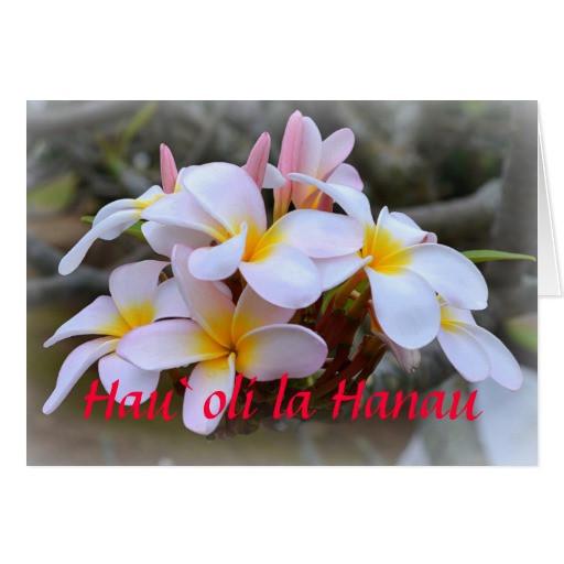 Best ideas about Hawaiian Birthday Wishes . Save or Pin Happy Birthday Plumeria Hawaiian Greeting Card Now.