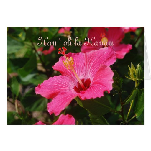 Best ideas about Hawaiian Birthday Wishes . Save or Pin Hawaiian Happy Birthday Pink Striped Hibiscus Greeting Now.