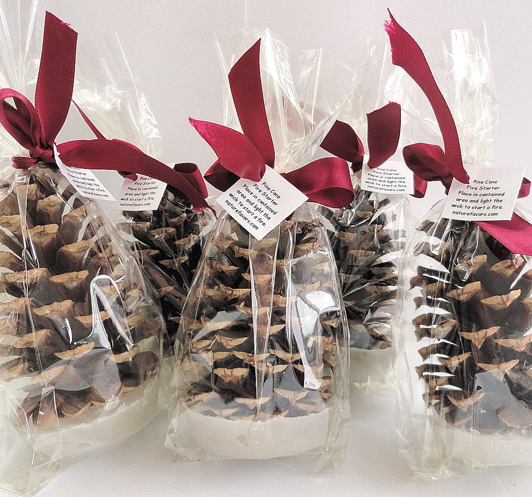 Best ideas about Holiday Party Gift Ideas . Save or Pin 25 Pine Cone Fire Starter Christmas Party Favors Holiday Now.