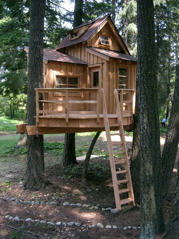 Best ideas about Home For Adults . Save or Pin Tree Houses for Adults Visit google Now.