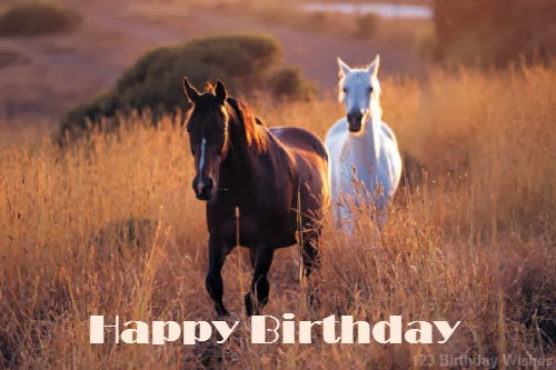 Best ideas about Horse Birthday Wishes . Save or Pin Best Birthday Wishes and Messages 123 Birthday Wishes Now.