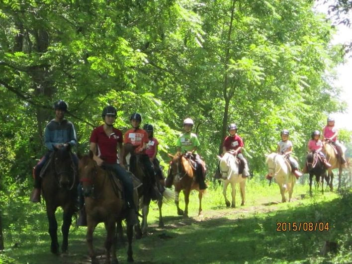 Best ideas about Horse Riding Birthday Party . Save or Pin Horseback Riding Birthday Party 12 years and older TJ Now.