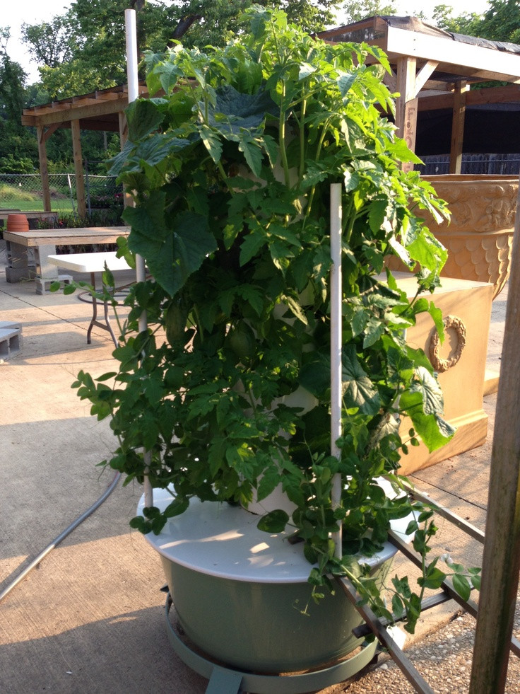Best ideas about Hydroponic Tower Garden DIY . Save or Pin Pinterest • The world's catalog of ideas Now.