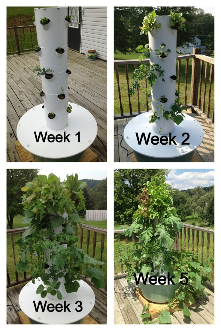 Best ideas about Hydroponic Tower Garden DIY . Save or Pin Aeroponic Tower Gardens – BGC Now.