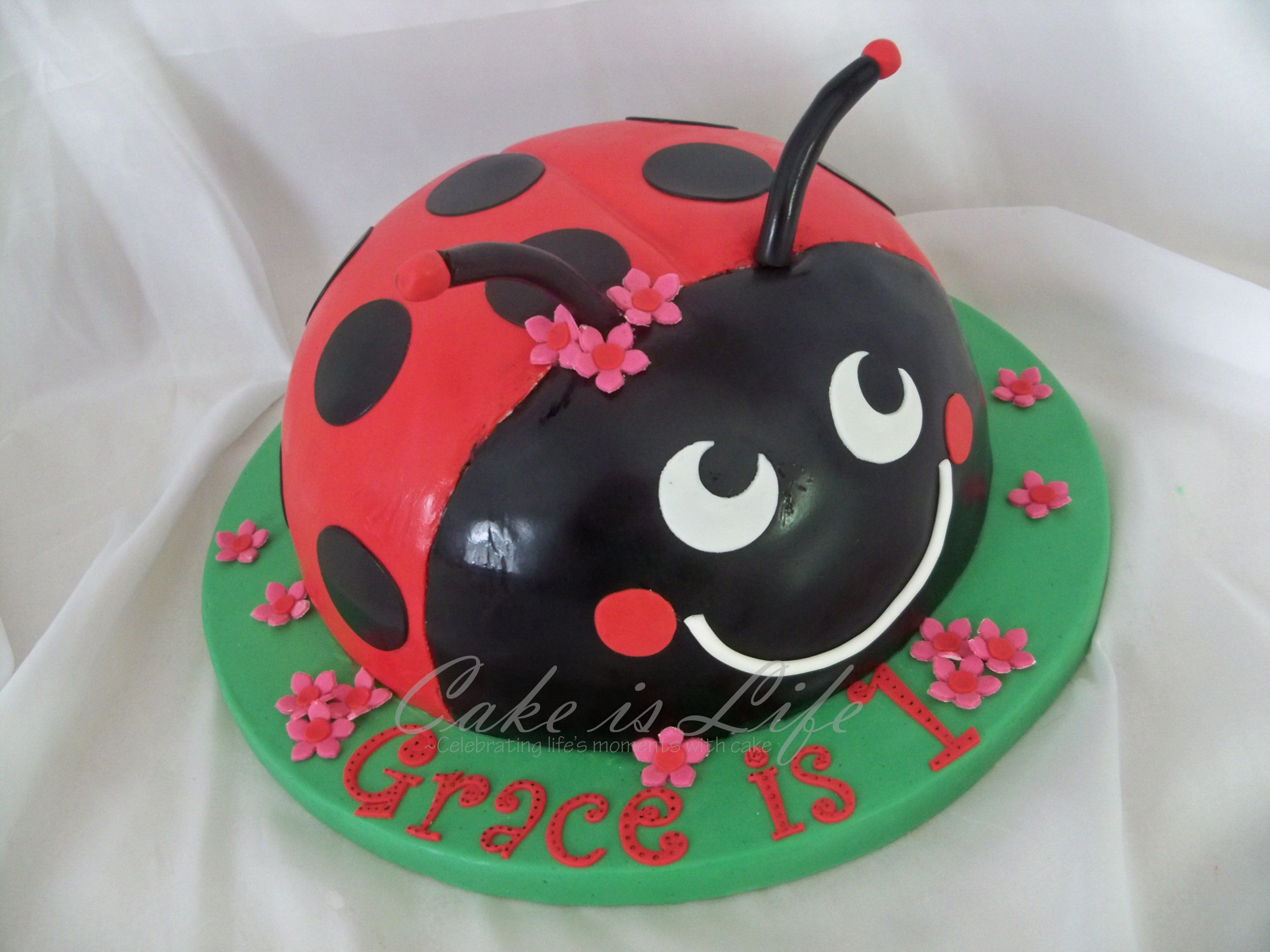 Best ideas about Ladybug Birthday Cake . Save or Pin Ladybug Birthday Cake Now.