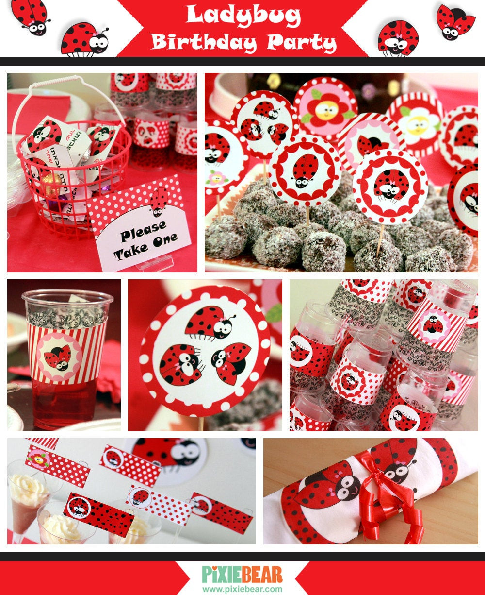 Best ideas about Ladybug Birthday Party . Save or Pin Ladybug Birthday Ladybug Party Lady Bug Birthday Lady Now.