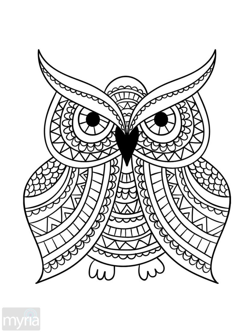 Best ideas about Large Adult Coloring Books . Save or Pin Print Coloring Pages For Adults at GetColorings Now.