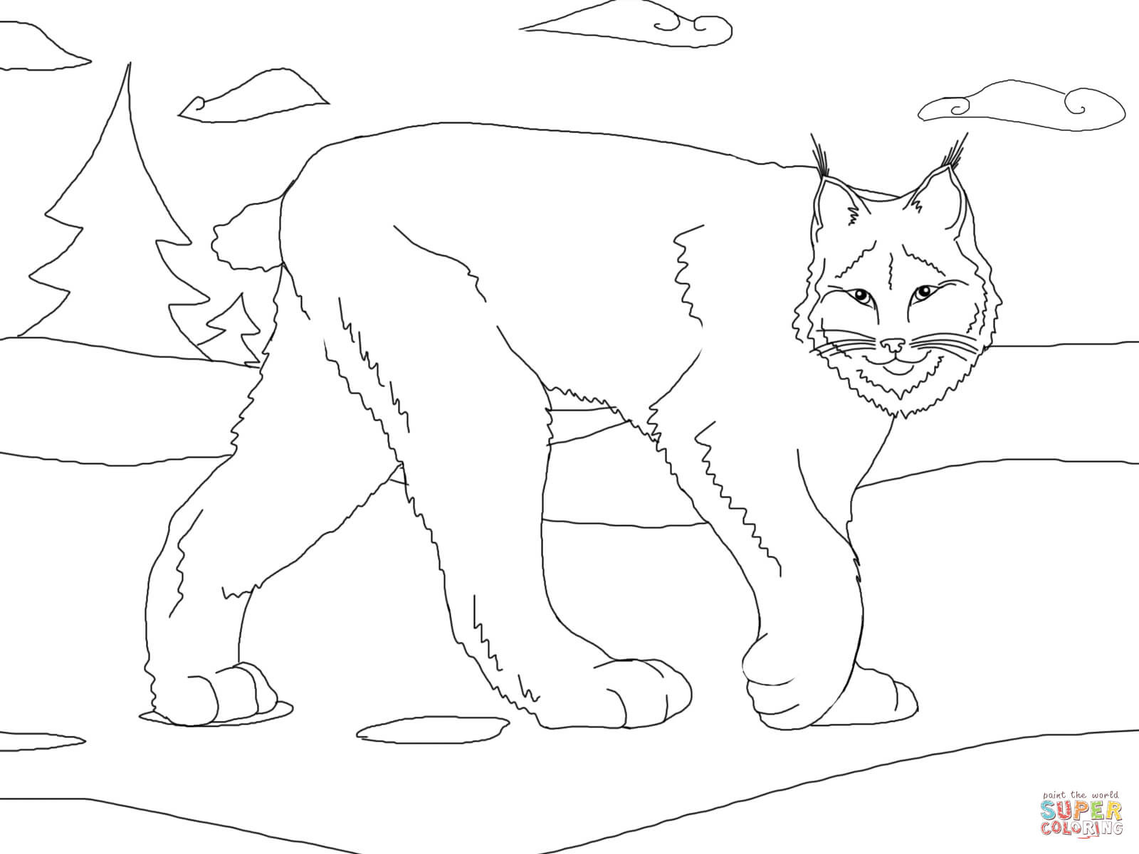 Best ideas about Lynx Coloring Sheets For Girls . Save or Pin Lynx Free Colouring Pages Now.
