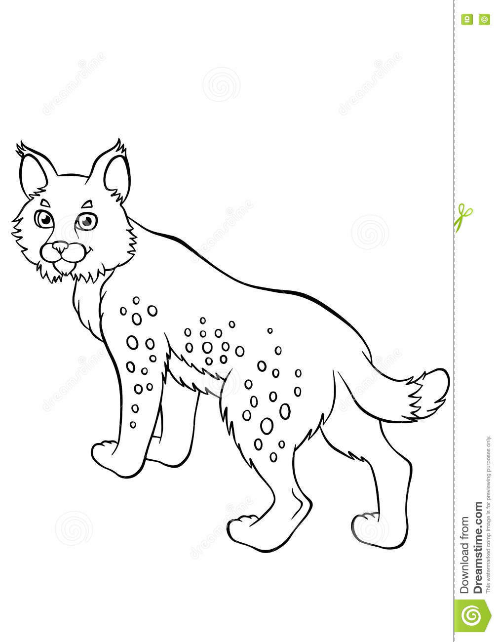 Best ideas about Lynx Coloring Sheets For Girls . Save or Pin Coloring Pages Animals Little Cute Lynx Stock Vector Now.
