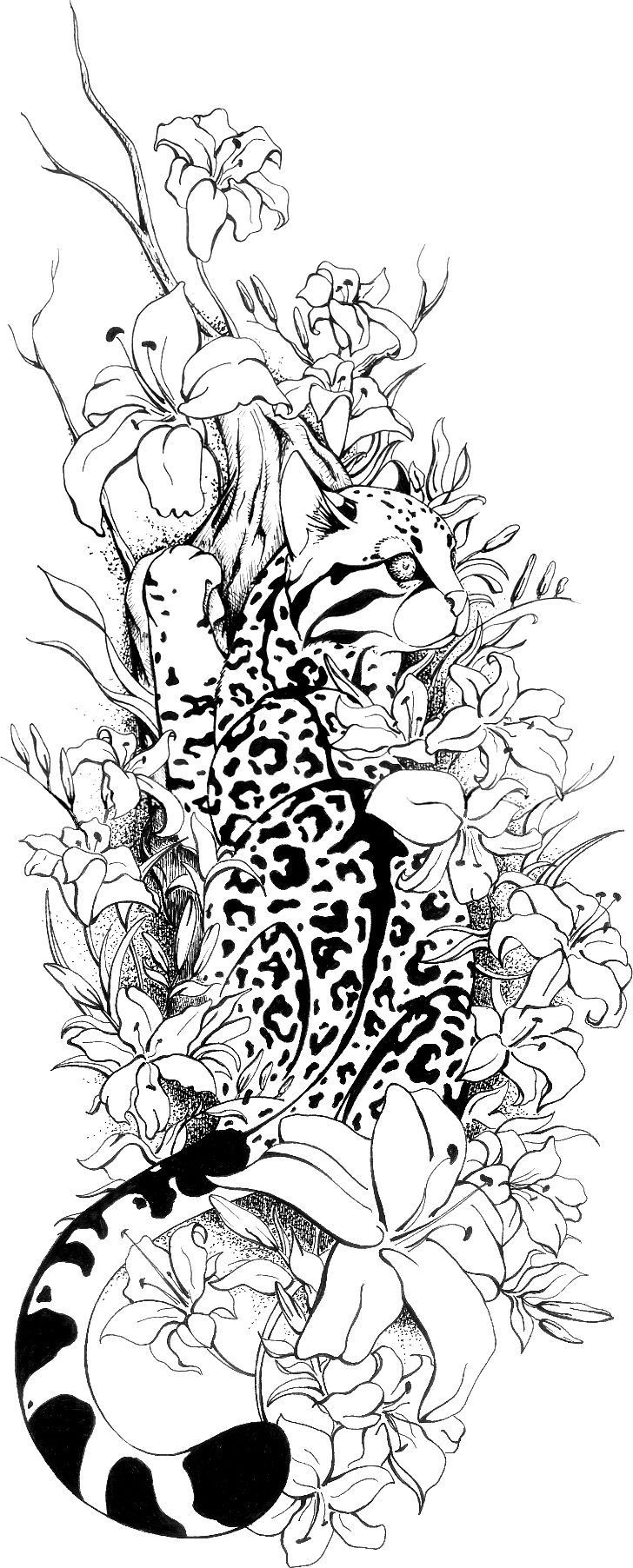 Best ideas about Lynx Coloring Sheets For Girls . Save or Pin 846 best images about Coloring Pages on Pinterest Now.