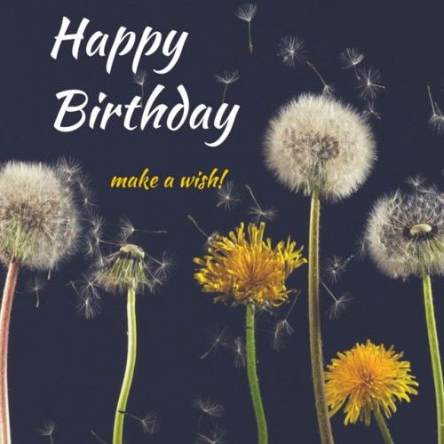 Best ideas about Make A Wish Birthday . Save or Pin Happy Birthday Make A Wish s and Now.