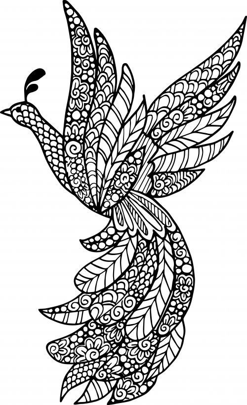 Best ideas about Mandala Animal Coloring Sheets For Girls . Save or Pin Advanced Animal Coloring Page 21 Now.