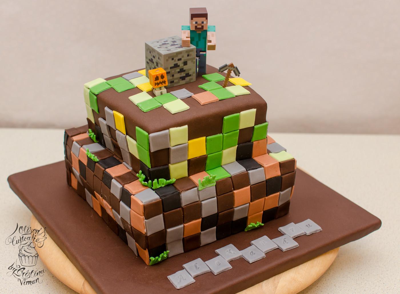 Best ideas about Minecraft Birthday Cake . Save or Pin Minecraft Birthday Cake – Olison s Cupcakes Now.