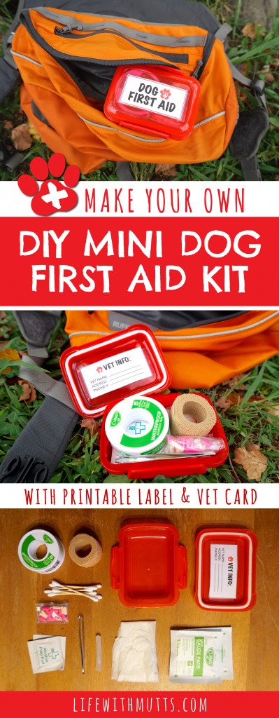 Best ideas about Mini First Aid Kit DIY . Save or Pin Mini DIY Dog First Aid Kit for Hiking Life With Mutts Now.