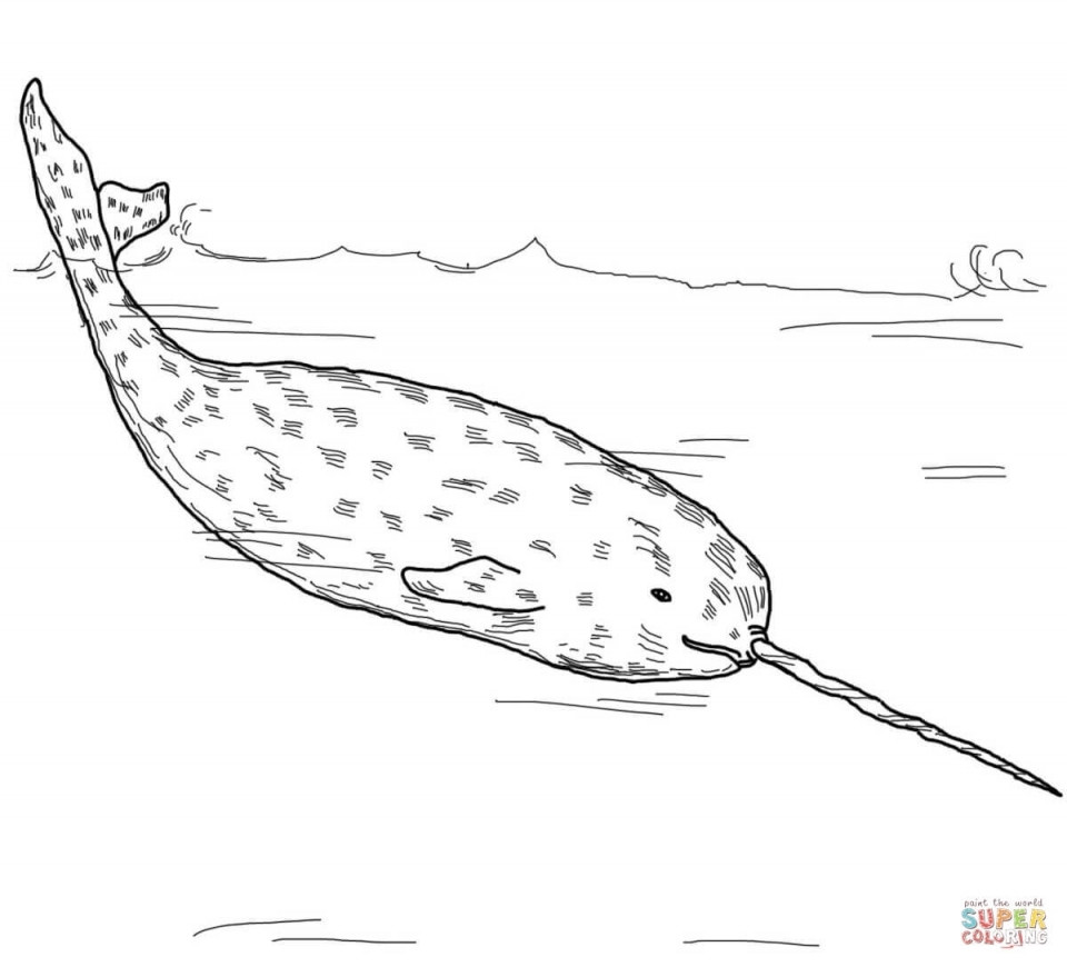 Best ideas about Narwhal Coloring Pages For Kids . Save or Pin Get This Narwhal Coloring Pages Kids Printable UVT58 Now.
