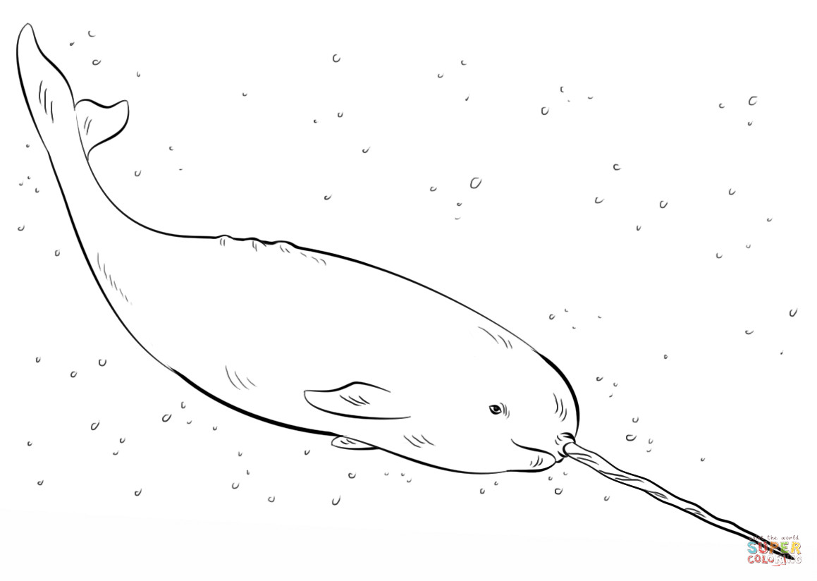 Best ideas about Narwhal Coloring Pages For Kids . Save or Pin Narwhal Coloring Pages Now.